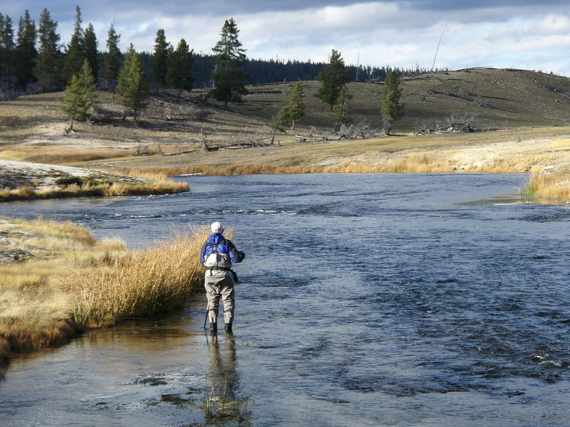 Angler on firehole for Yellowstone river fishing