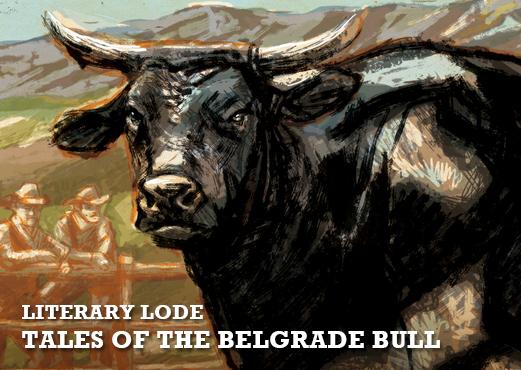 DM_main belgrade bull_0