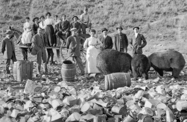 Bears at Dump 2 MHS Photo